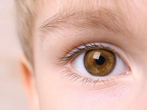 Augenarzt - Kindersehschule